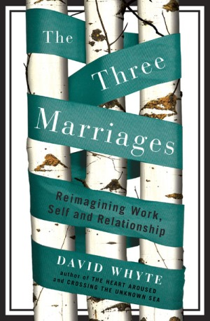 The Three Marriages book cover